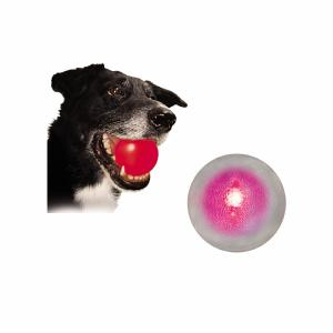 Meteorite LED Ball Dog Toy